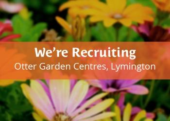 Jobs in Lymington